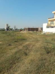 1350 sqft, Plot in TDI Wellington Heights Sector 117 Mohali, Mohali at Rs. 42.0000 Lacs