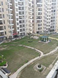 2333 sqft, 4 bhk Apartment in TDI Wellington Heights Sector 117 Mohali, Mohali at Rs. 35000