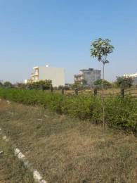 237 sqft, Plot in Builder TDI Infrastructure City Plots 1 Sector 117 Mohali Mohali Sector 117 Mohali, Mohali at Rs. 60.0000 Lacs