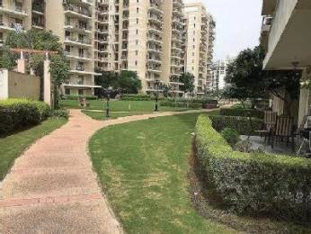 2309 sqft, 3 bhk Apartment in Satya The Legend Sector 57, Gurgaon at Rs. 1.8000 Cr