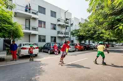 1156 sqft, 3 bhk Apartment in Vatika Primrose Floors Sector 82, Gurgaon at Rs. 87.0000 Lacs