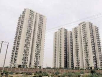 2527 sqft, 4 bhk Apartment in Conscient Heritage One Sector 62, Gurgaon at Rs. 47000