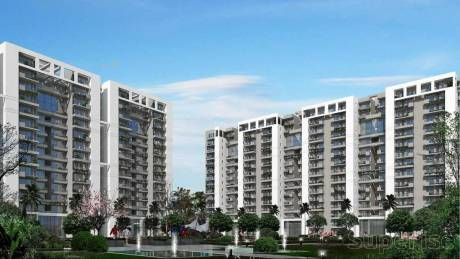 1578 sqft, 3 bhk Apartment in Tulip Violet Sector 69, Gurgaon at Rs. 1.1000 Cr