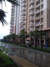 1600 sqft, 3 bhk Apartment in Omaxe Hills Sector 43, Faridabad at Rs. 24500