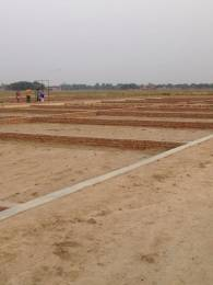1000 sqft, Plot in Builder Project Gohniya, Allahabad at Rs. 5.0000 Lacs
