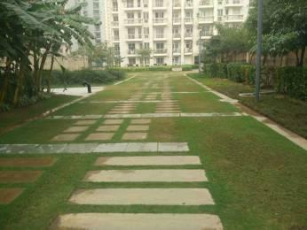2764 sqft, 4 bhk Apartment in BPTP Mansions Park Prime Sector 66, Gurgaon at Rs. 1.8000 Cr