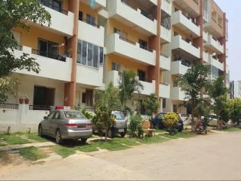 1301 sqft, 2 bhk Apartment in Jain Shebang Begur, Bangalore at Rs. 18000