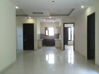 1800 sqft, 3 bhk BuilderFloor in Builder Project Green Field, Faridabad at Rs. 40.0000 Lacs