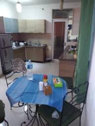 1100 sqft, 2 bhk Apartment in Niho Jasmine Scottish Garden Ahinsa Khand 2, Ghaziabad at Rs. 15000