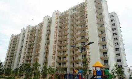 2400 sqft, 4 bhk Apartment in Tulip Tulip Ivory Sector 70, Gurgaon at Rs. 60000