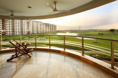 6750 sqft, 4 bhk Apartment in Ambience Caitriona Sector 24, Gurgaon at Rs. 13.0000 Cr