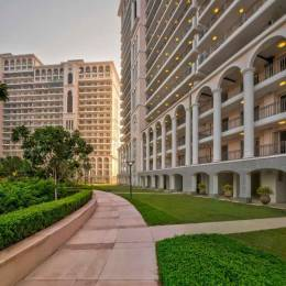 1920 sqft, 3 bhk Apartment in DLF The Skycourt Sector 86, Gurgaon at Rs. 1.2000 Cr