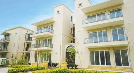 1938 sqft, 3 bhk BuilderFloor in BPTP Amstoria Country Floor Sector 102, Gurgaon at Rs. 1.2791 Cr