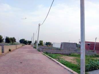 720 sqft, Plot in Builder BALA JI ENCLAVE Sector 122, Noida at Rs. 13.2400 Lacs