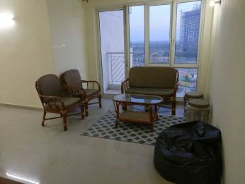 860 sqft, 2 bhk Apartment in Logix Blossom Greens Sector 143, Noida at Rs. 17000