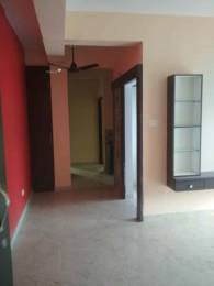 1208 sqft, 2 bhk Apartment in Builder Project Alimuddin Street, Kolkata at Rs. 29000