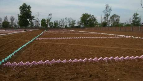 1200 sqft, Plot in Builder Swans green empire Bihta, Patna at Rs. 12.0000 Lacs