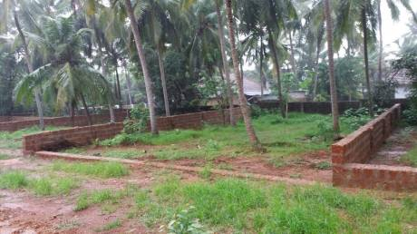2610 sqft, Plot in Builder Project Padubidri, Mangalore at Rs. 14.4000 Lacs