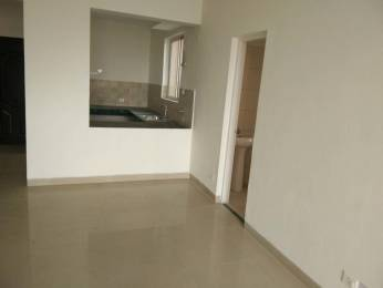 2250 sqft, 3 bhk BuilderFloor in BPTP Park Floors II Sector 76, Faridabad at Rs. 45.0000 Lacs
