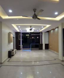3690 sqft, 4 bhk BuilderFloor in Builder Dream work builder Greenfields, Faridabad at Rs. 1.1500 Cr