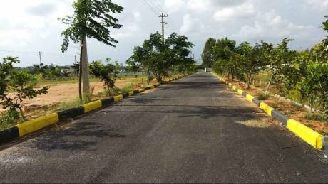 1450 sqft, Plot in Srinivasa Spring Hills Anekal City, Bangalore at Rs. 18.8500 Lacs