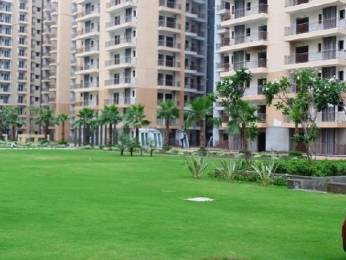 955 sqft, 2 bhk Apartment in Builder Nirala Estate techzone 4, Greater Noida at Rs. 6000