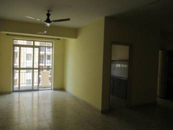 1240 sqft, 2 bhk Apartment in IBC Platinum City Yeshwantpur, Bangalore at Rs. 20000
