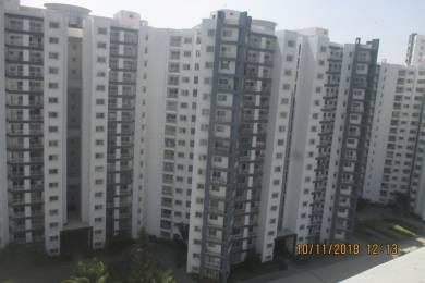 1773 sqft, 3 bhk Apartment in Kumar Princetown Royale Jalahalli, Bangalore at Rs. 20000