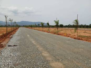 1800 sqft, Plot in Builder Signature Gardens Tirupati Airport Road, Tirupati at Rs. 20.0000 Lacs