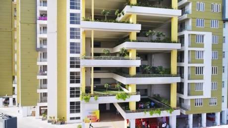 955 sqft, 2 bhk Apartment in Dhanuka Sunshine Prime Dholai, Jaipur at Rs. 30.0000 Lacs