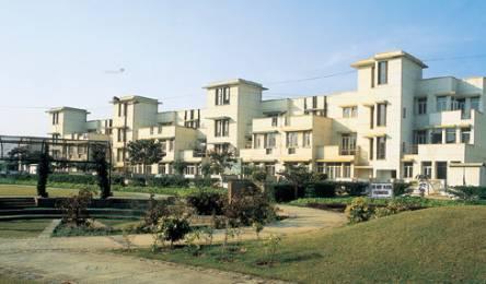 2475 sqft, 3 bhk BuilderFloor in Unitech South City II Sector 49, Gurgaon at Rs. 26000