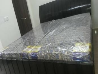1326 sqft, 3 bhk Apartment in Tulip Tulip White Sector 69, Gurgaon at Rs. 15000