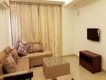 1132 sqft, 2 bhk Apartment in Ireo Uptown Sector 66, Gurgaon at Rs. 26000