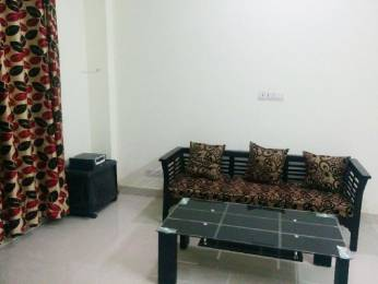 761 sqft, 1 bhk Apartment in CGHS HEWO Apartment Sector 31, Gurgaon at Rs. 17000