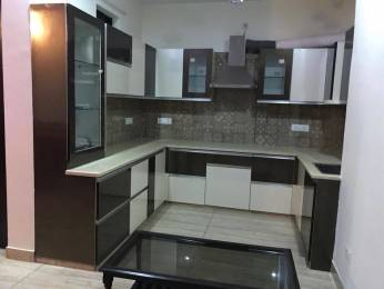 1181 sqft, 2 bhk BuilderFloor in Builder Project DLF Phase 3, Gurgaon at Rs. 19000