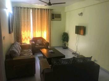 1191 sqft, 2 bhk BuilderFloor in Builder Project Sector 21, Gurgaon at Rs. 20500