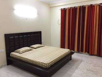 1260 sqft, 2 bhk Apartment in Emaar Palm Drive Sector 66, Gurgaon at Rs. 23000
