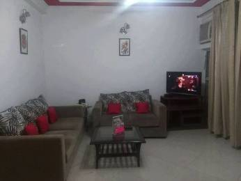 1100 sqft, 2 bhk Apartment in Mittal Cosmos Executive Apartment Ansals Palam Vihar, Gurgaon at Rs. 20000