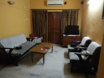 700 sqft, 1 bhk Apartment in Pioneer Pioneer Park PH 1 Sector 61, Gurgaon at Rs. 20000