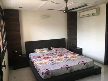 1540 sqft, 3 bhk Apartment in Tulip Tulip White Sector 69, Gurgaon at Rs. 16000
