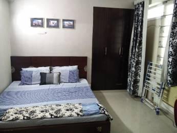 1100 sqft, 2 bhk Apartment in DLF Carlton Estate Sector 53, Gurgaon at Rs. 22000