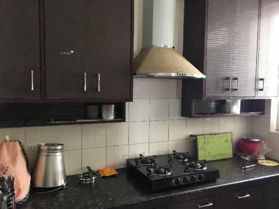 1336 sqft, 2 bhk Apartment in Unitech Fresco Sector 50, Gurgaon at Rs. 24000