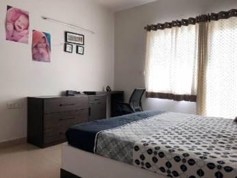 1400 sqft, 3 bhk Apartment in AWHO Sujjan Vihar Sector 43, Gurgaon at Rs. 30000