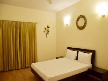 1950 sqft, 3 bhk Apartment in Emaar Palm Drive Sector 66, Gurgaon at Rs. 35000