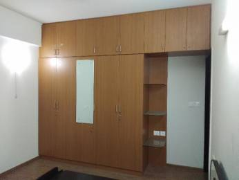 1000 sqft, 2 bhk BuilderFloor in DLF Colony Old Sector 14, Gurgaon at Rs. 24000