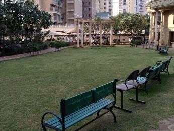 1350 sqft, 2 bhk Apartment in Paradise Sai Pride Sanpada, Mumbai at Rs. 45000