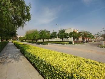 1264 sqft, 2 bhk Apartment in Builder Project TDI City Kundli, Sonepat at Rs. 12000