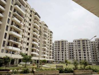 1510 sqft, 3 bhk Apartment in Builder sbp homes Chandigarh Road, Chandigarh at Rs. 36.9000 Lacs