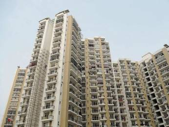 900 sqft, 2 bhk Apartment in Panchsheel Villas Sector-16 B Gr Noida, Greater Noida at Rs. 30.0000 Lacs
