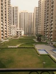 2480 sqft, 4 bhk Apartment in Nirala Aspire Sector 16 Noida Extension, Greater Noida at Rs. 82.2120 Lacs